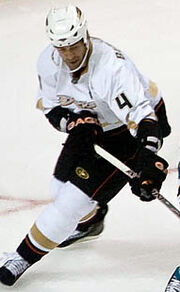 Todd Bertuzzi (Ducks)