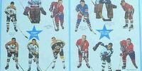 1970-71 NHL season