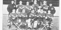 1920-21 USAHA Season