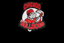 Chicago Jr Bulldogs