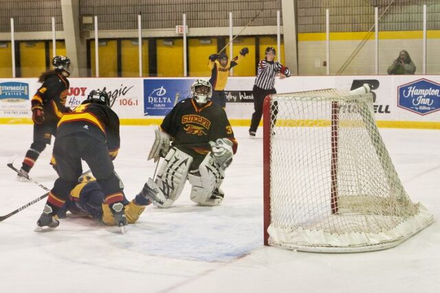 File:Gryphons 2011Playoffs.jpg