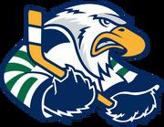 Surrey Eagles logo