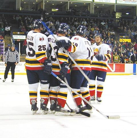 File:The colts celebrate a goal by Bryan Little during the second period.jpg