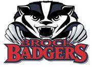Brock badgers large