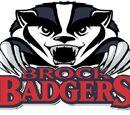 Brock Badgers