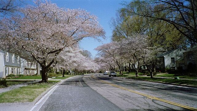 File:Crofton, Maryland.jpg