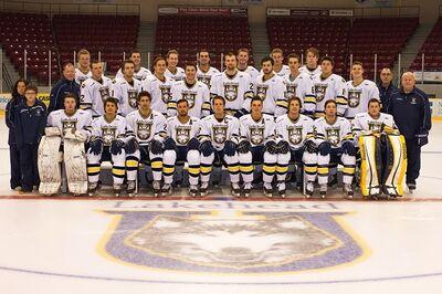 Lakehead-teamPhoto 2013-2014