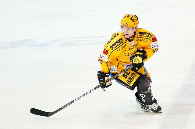 File:Jukka Hentunen - KalPa 2011.jpg