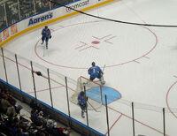 Hedberg in goal