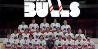 1976–77 Birmingham Bulls season