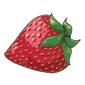 Organic Strawberry Before 2013 revamp