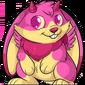 Pink Jakrit