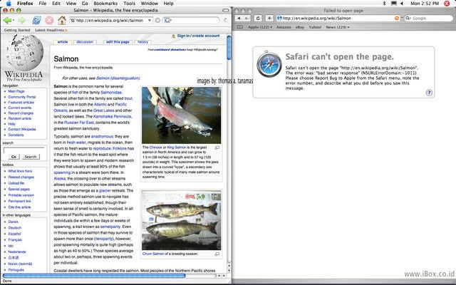 Berkas:Error Safari 1.jpg