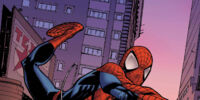 Marvel Adventures Spider-Man: The Video Game