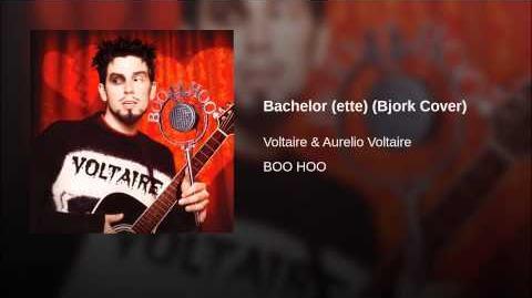Bachelor (ette) (Bjork Cover)