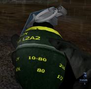Igi2 grenade see