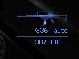 Igi2 icon g36