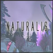 Button - Naturalis