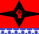Socialist Organisation of Democratic Societies