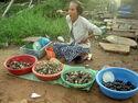 Phu quoc vente a la sauvette