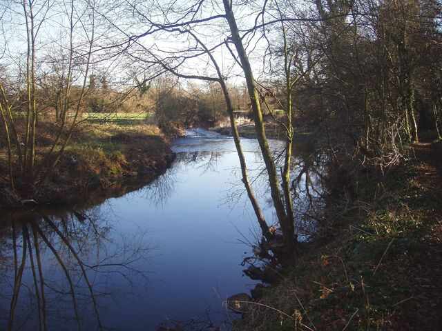 File:The banks of the river Arrow (Alcester, Warwickshire).JPG