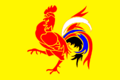 Flag of Lille-Wallonia-DD62