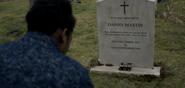 DannyM