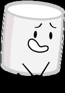 Marshmallow2017Pose