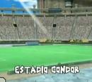 Estadio Cóndor
