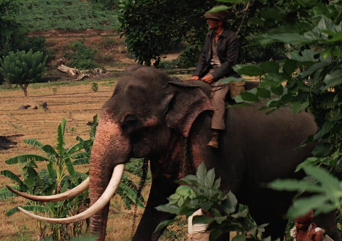 File:Elephant ride.jpg