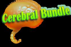 Cerebral-bundle