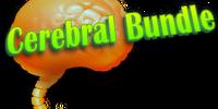Cerebral Bundle