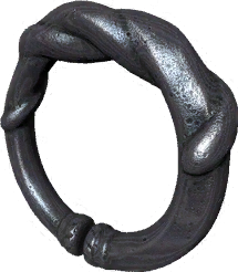File:Ring WormHole.png