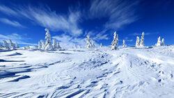 Land of Always Winter(1)