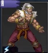 The Thunder Fist
