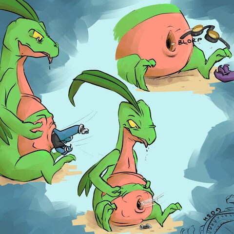 File:Grovyle belly button vore.jpg