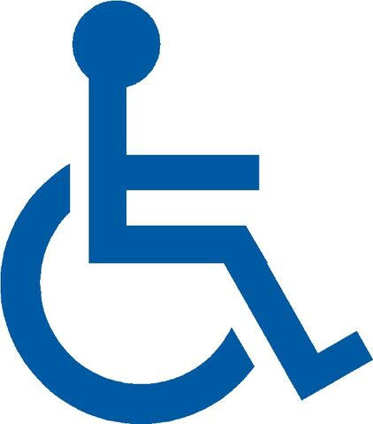 File:Handicap1.jpg