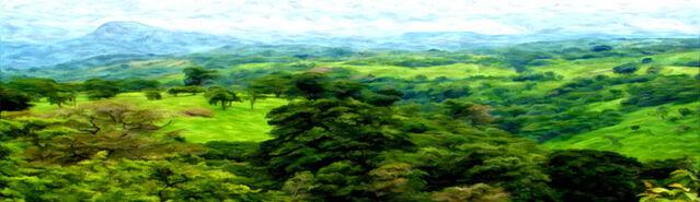 File:Banner---forest-plains1.jpg