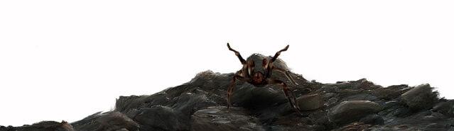 File:Initium Tarantula.jpg