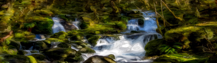 Banner---forest-waterfall2
