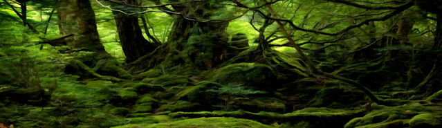 File:Initium Dense Jungle.jpg
