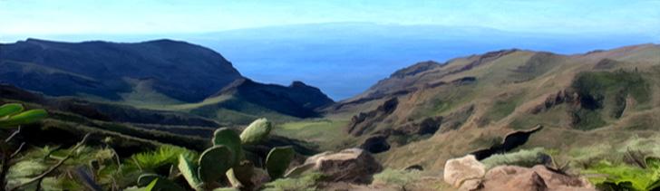 Banner---Cliffside-lookout