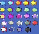 Colored Guppy