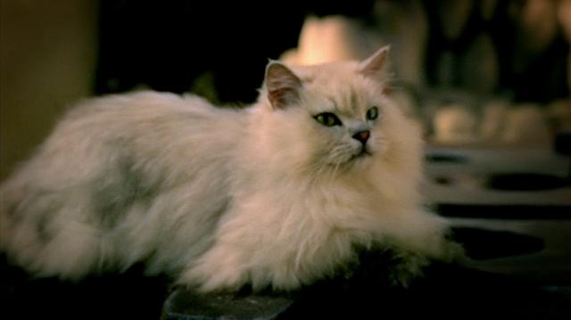 File:Inspector Gadget 2003 M.A.D. Cat