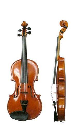 File:381px-Violin VL100.jpg