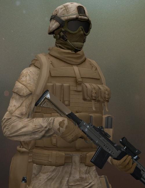 INS Security Designated Marksman