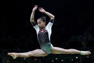 Wang2016olympicsaa