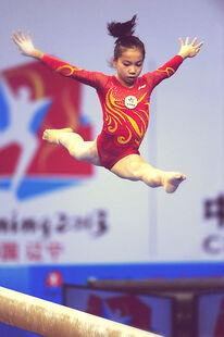 Wang yan 2013 chinese nat games