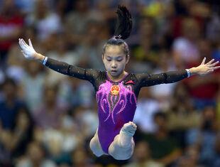 Wang2014bbef