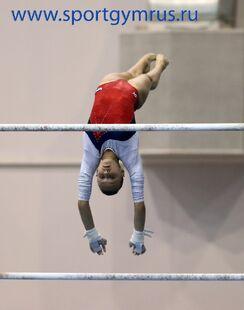 Spiridonova2014ruscupubef